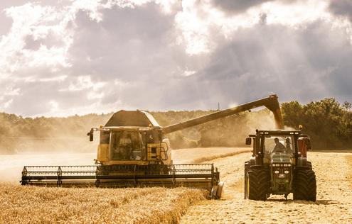 Der Rohstoff ist Eigenbau: Als Getreidebauer sitzt Hans-Gerhard Fink an der Quelle zu hochwertigem Korn aus dem schwäbischen Hochland.