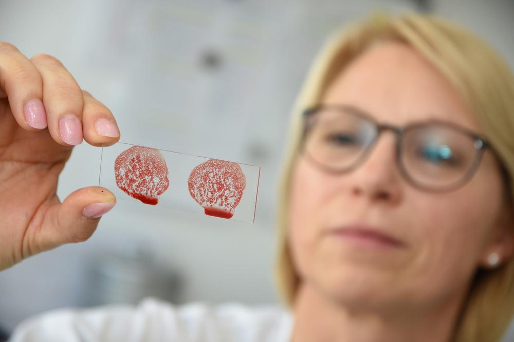 Die Antitoxin GmbH macht ihr Hauptgeschäft mit Reagenzien zur Bestimmung der Blutgruppen – und ist weltweit gefragt